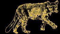 Patagonia Puma Stencil Ultra Paine